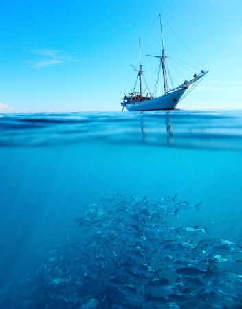 fishing scene: Sail boat in a tropical calm sea on a surface and large school of a Jackfish underwater