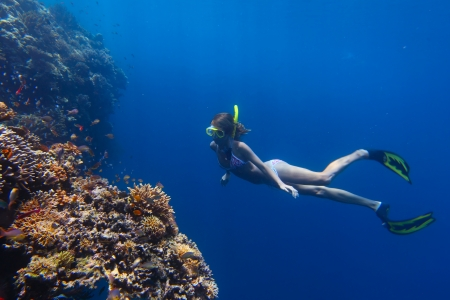 Young woman diving on a breath hold by a coral reef photo