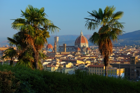 Cathedral Santa Maria del Fiore and bush palm trees. Florence, Italy Stock Photo - 16875505