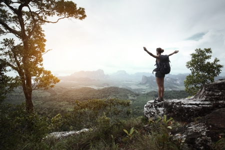 Young hiker with backpack standing with raised hands on a cliff's edge and looking over wild tropical valley Stock Photo - 16881900