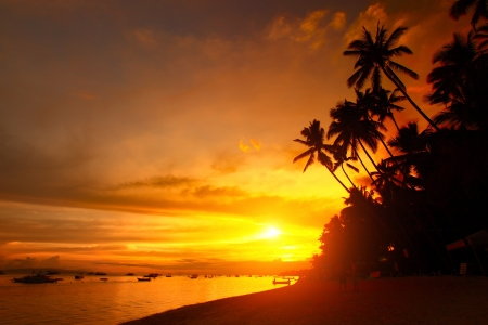 bohol: Sandy beach with palm trees at sunset time. Alona beach of Panglao island. Philippines