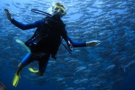 underwater diving: Underwater shoot of a young lady diving with scuba in a clear sea with swirling school of Jack fish on the background Stock Photo