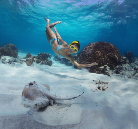 Underwater shoot of a woman swimming over sandy sea bottom with some corals and watching spotted ray Stock Photo - 18043012