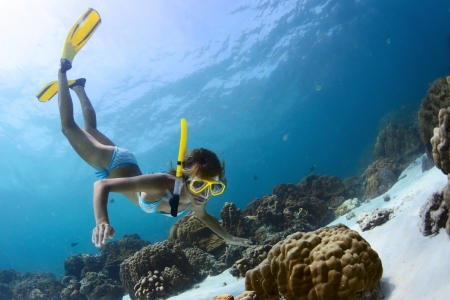 Young lady snorkeling in a tropical sea with yellow fins Stock Photo