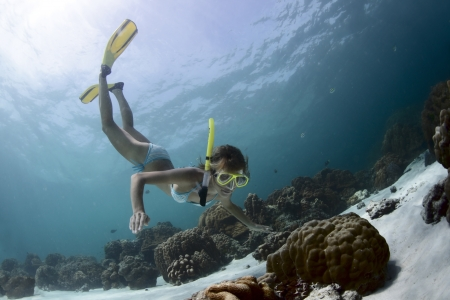 Young lady snorkeling in a tropical sea with yellow fins Stock Photo - 18043070