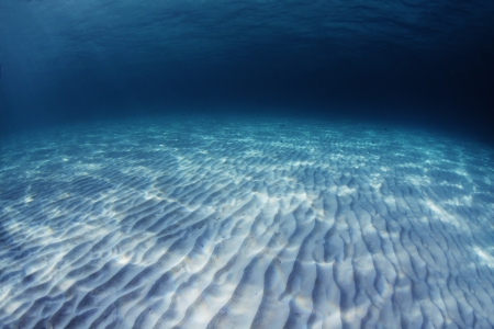 bottom of sea: Underwater shoot of an infinite sandy sea bottom with waves on a sea surface