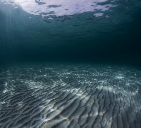 Underwater shoot of an infinite sandy sea bottom with waves on a sea surface Stock Photo - 18043020
