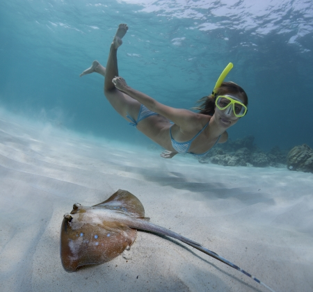 Underwater shoot of a young lady snorkeling and doing skin diving over sandy sea bottom with blue spotted ray on the foreground Stock Photo - 18043019