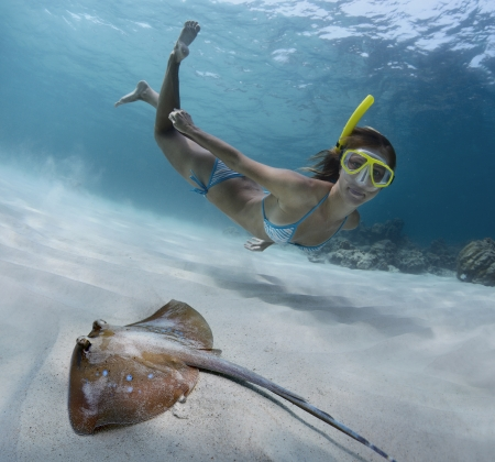 Underwater shoot of a young lady snorkeling and doing skin diving over sandy sea bottom with blue spotted ray on the foreground Stock Photo - 18043015