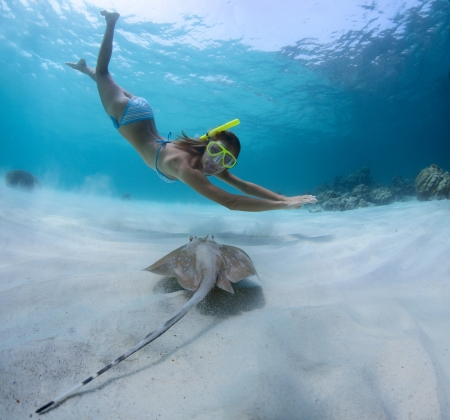 skin diving: Underwater shoot of a young lady snorkeling and doing skin diving over sandy sea bottom with blue spotted ray on the foreground Stock Photo