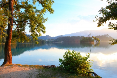 bled: Calm Bled lake and trees on its coast with Alps on the background Stock Photo
