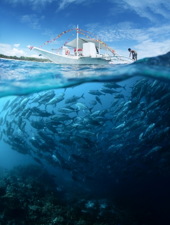 boat fishing: Collage with school of Jack fish underwater and traditional boat on a surface at sunny day