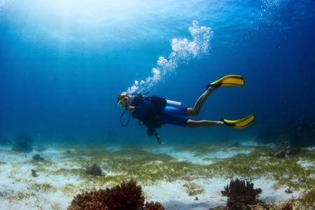 scuba woman: Scuba diver exploring tropical dive site and finning over bottom Stock Photo