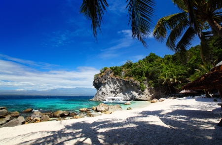 apo: White sandy beach and palm trees in a blue tropical lagoon. Apo island, Philippines