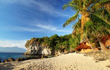 apo: Sandy beach and palm trees in a small lagoon. Apo island, Philippines