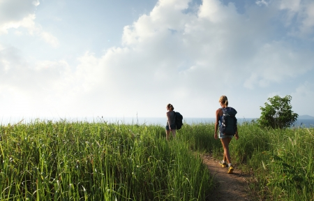 trek: Hikers with backpacks walking through tropical lush meadow Stock Photo