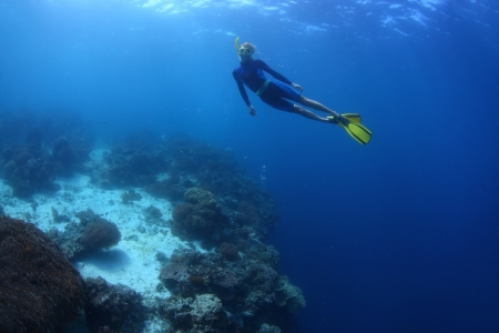 Young lady swimming underwater on a breath hold by a coral reef wall photo