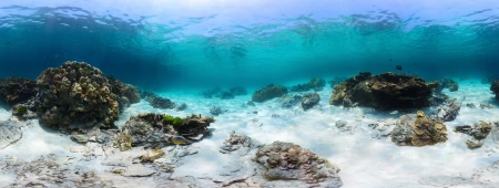 bottom of sea: Panorama of a tropical reef with rocks on a sandy bottom. Racha Yai island, Thailand