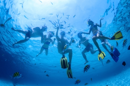 Underwater shoot of a group of friends snorkeling in a clear sea and feeding fish Stock Photo