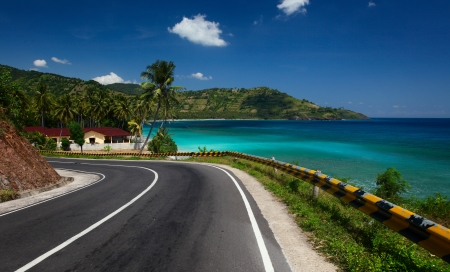 Asphalt road along tropical coastline with palm trees and buildings on a side