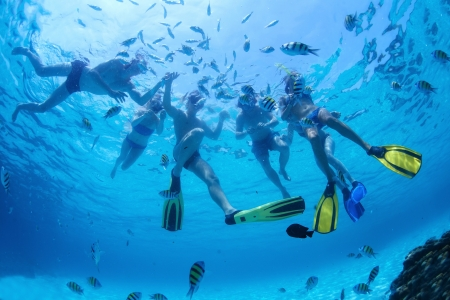 Group of friends snorkeling and feeding fish in a sea
