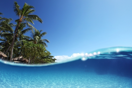 Blue tropical clear sea with sandy bottom and green palm trees on a coast