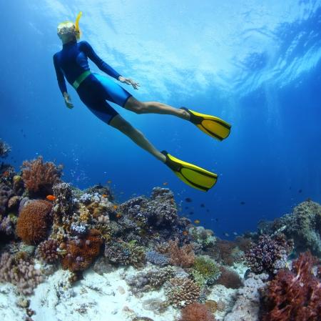 若い女性鮮やかなサンゴ礁の海でダイビング