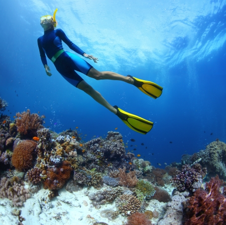 Young woman freediving in a sea over vivid coral reef photo