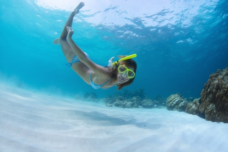 Young lady snorkeling and diving on a breath hold in a clear tropical sea photo