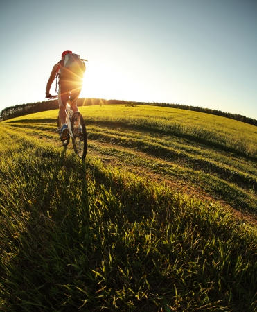 eye traveller: Young man cycling in a summer meadow at sunset