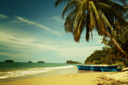 side light: Tropical sandy beach with palm tree and the boat  Koh Chang, Thailand
