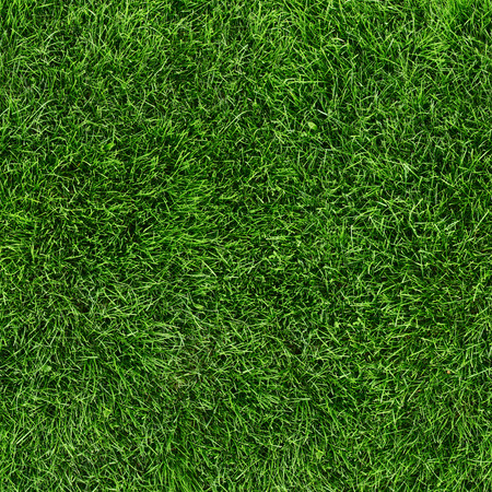 Green grass seamless texture. Seamless in only horizontal dimention. Stock Photo