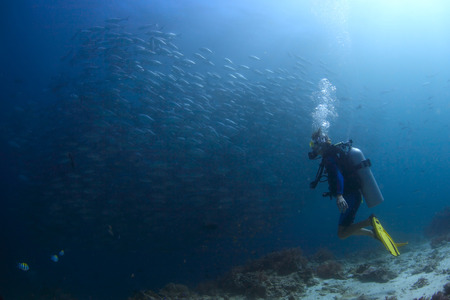 bottom of sea: Scuba diver watching huge school of Jack fish swirling underwater Stock Photo