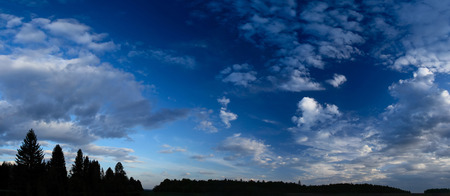 troposphere: Panorama of a sunset sky with clouds and pine tree silhouettes