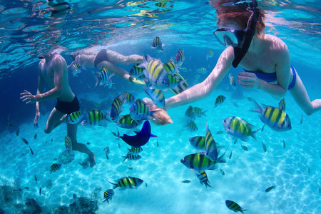 Young friends snorkeling and feeding fish in a tropoical sea Stok Fotoğraf