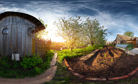Panorama of the spring blooming garden in a village at sunset. Equiregtangular projection photo