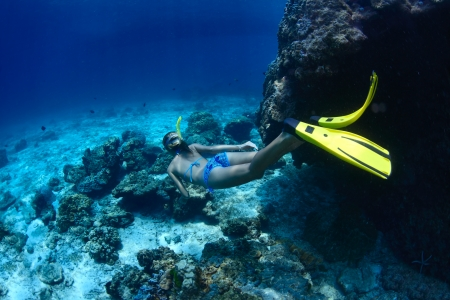 breath hold: Young woman snorkeling and diving on a breath hold in a tropical sea over coral reefs