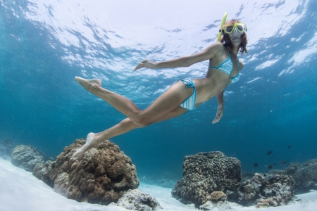Young lady swimming underwater over coral reefs in a tropical sea photo