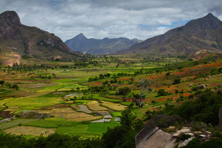 Green valley with rice fields. Madagascar Stock Photo - 25584246