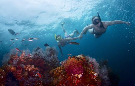 Paar snorkelen over koraalrif