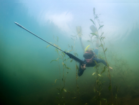 speargun: Underwater shot of the lady diving with speargun using breath hold