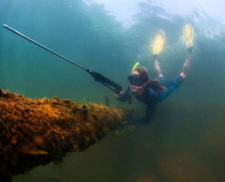 breath hold: Underwater shot of the lady diving with speargun on a breath hold