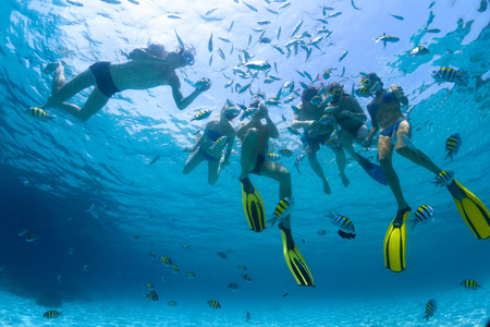 Underwater shot of the group of friends snorkeling in clear sea with fish photo