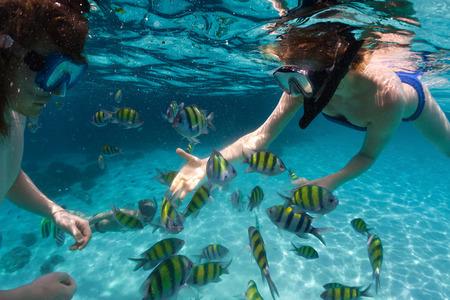 Onderwater schot van de paar snorkelen in de heldere zee met vis Stockfoto