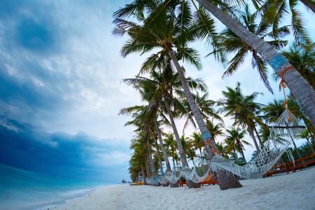 bohol: Tropical sandy beach with hammocks hanging on palm trees Stock Photo