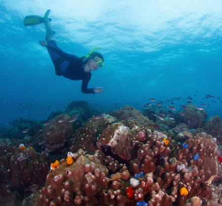 free diver: Free diver finning over coral reef in tropical sea