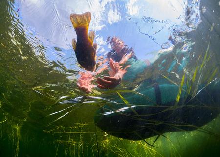 Underwater shot of the fisherman catching the fish