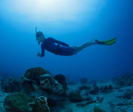 free diver: Free diver gliding on the depth in tropical sea