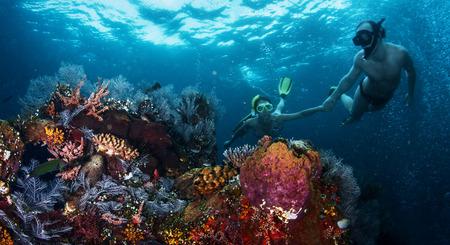 カップルは一緒に鮮やかなサンゴ礁でシュノーケ リングします。サンゴに焦点を当てる
