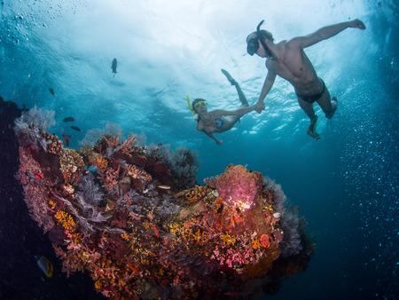 鮮やかなサンゴ礁でシュノーケ リングのカップル